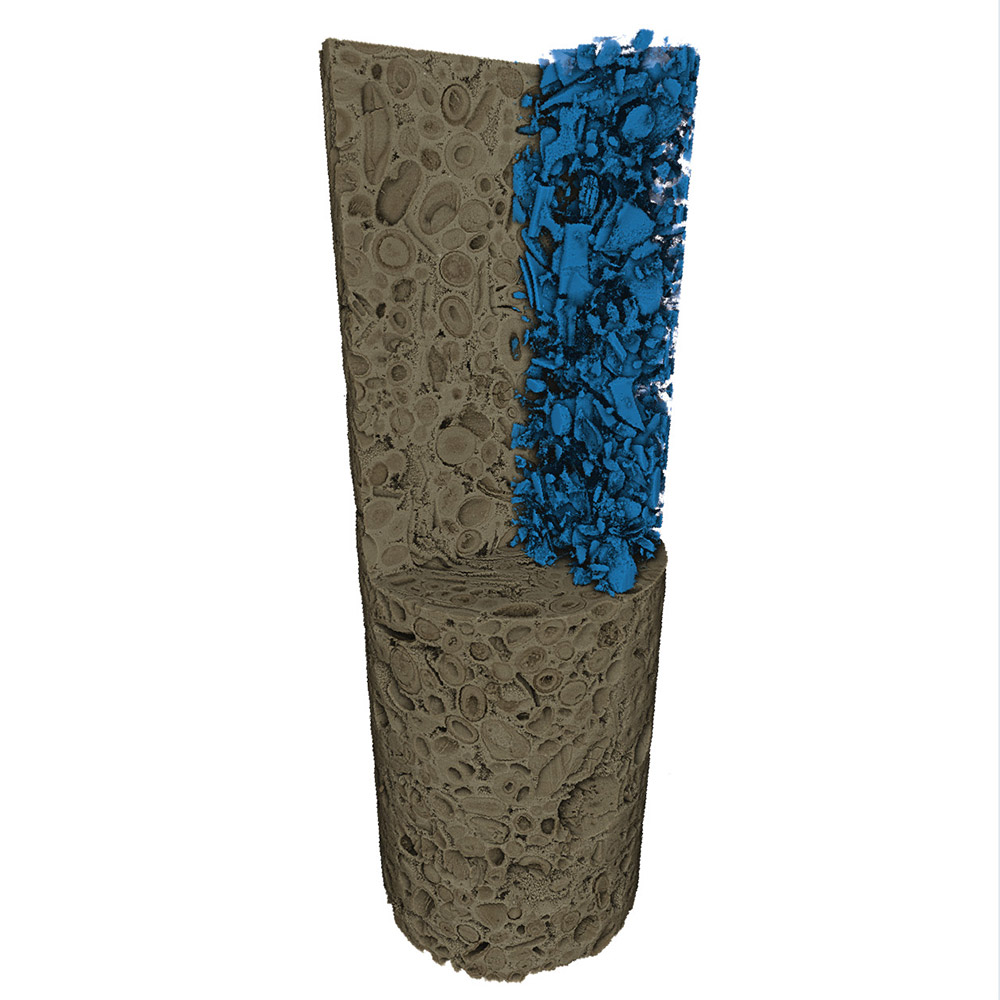 Carbonate microplug